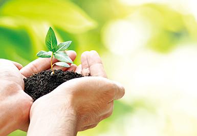 Sustainability丨Green Supply Chain